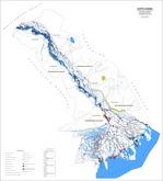 Представлена карта-схема распределения лесов по целевому назначению