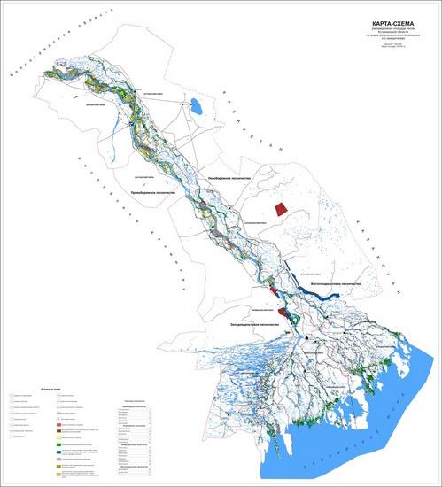 Представлена карта-схема распределения лесов по видам разрешенного использования