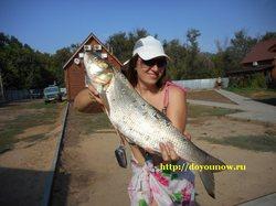 Фотоотчеты: рыбалка на Волге в августе и сентябре 2014 года