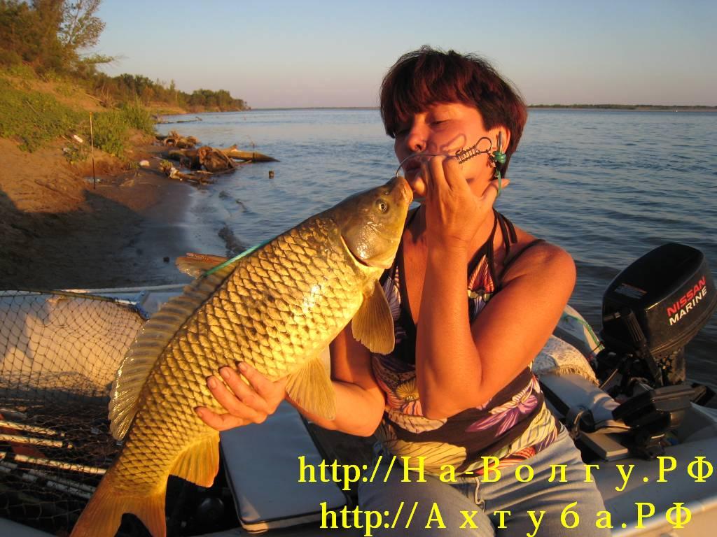 http://doyounow.ru/images/09201129.jpg