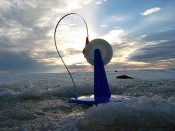Руководство рыбака для рыбалки на Ахтубе и Волге: Модели жерлиц