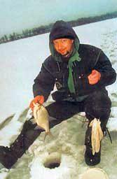 Руководство рыбака для рыбалки на Ахтубе и Волге: Кивок
