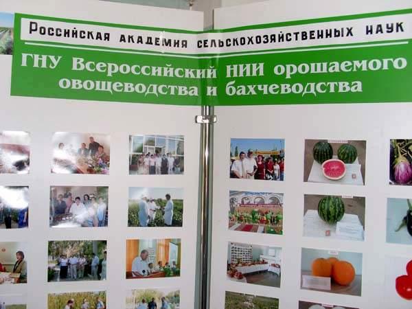 Астрахань, Музей Российский арбуз