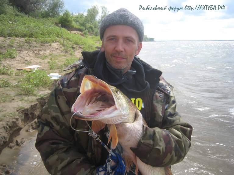 http://doyounow.ru/images/IMG_9672.JPG