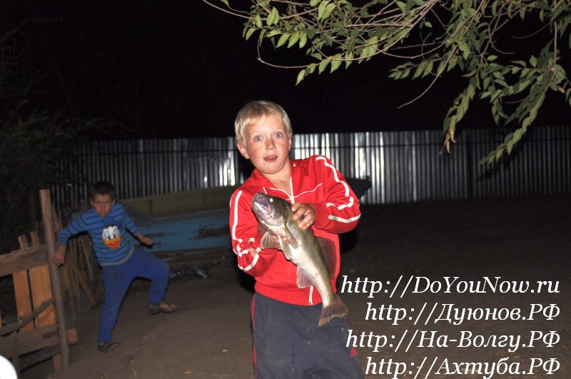 http://doyounow.ru/images/doyounow015.jpg