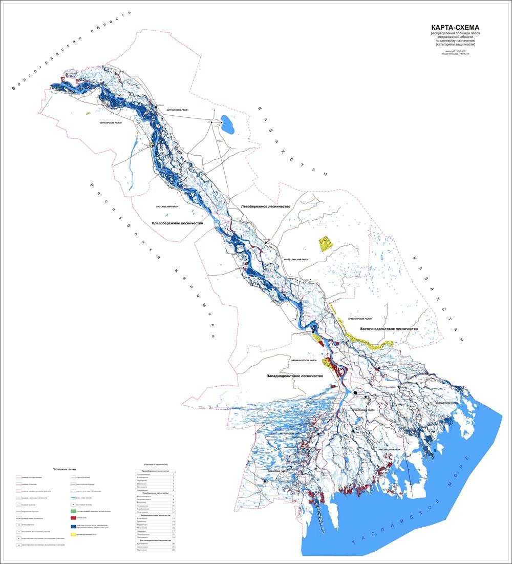 Представлена карта-схема лесов Астраханской области ...